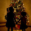Christmas : 2 galleries with 46 photos